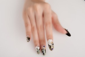 NailSnap_MG_2764